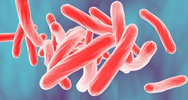 Tratamento para tuberculose é incorporado pelo Ministério da Saúde